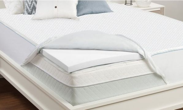 Things To Consider Before Buying a Bed Bug Mattress Protector